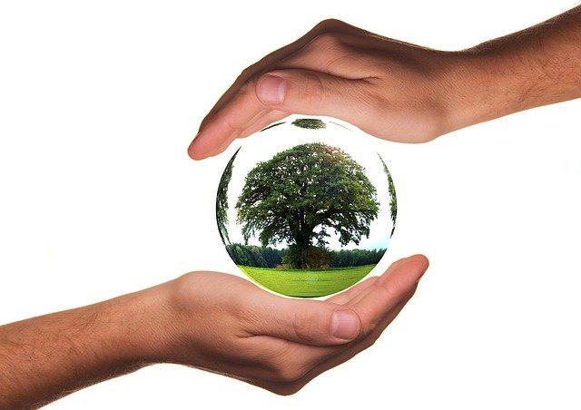 ראשון בניקיון ובשמירה על הסביבה